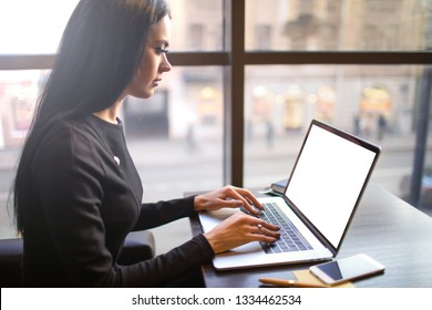 Serious woman skilled marketing coordinator typing on pc laptop computer with empty mockup copy space screen background for advertising content while relaxing in restaurant during recreation time