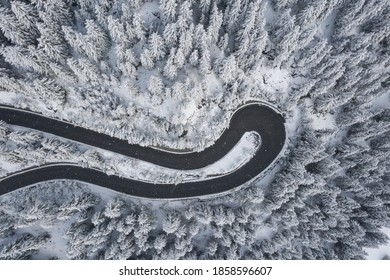 serpentine in mountains with in snow covered forest.