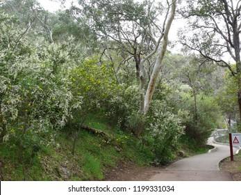 Serpentine National Park Western Australia