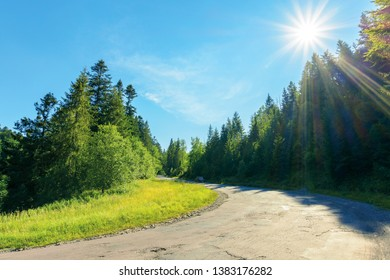 serpentine uphill through country forest. beautiful scenery on a bright summer day. explore back country - travel by car concept. transportation background