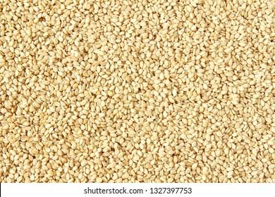 sesame Sesamum indicum or til seeds as food texture background