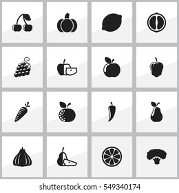 Set Of 16 Editable Food And Vegetable Icons. Includes Symbols Such As Duchess, Orange Slice, Berry And More. Can Be Used For Web, Mobile, UI And Infographic Design.