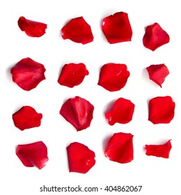 Set of 16 red rose petals on white background