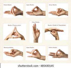 "set of 9 mudras. It includes such mudras: Prana, Gyan, Apan, Prithvi, Surya, Shoonya, Vayu, ""Shield of Shambhala"" and  ""Flying lotus"". Gestures is  isolated on white background."