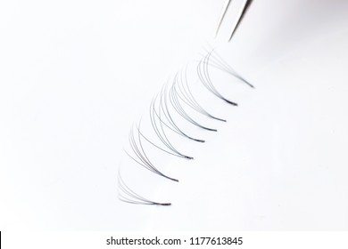 Set artificial lashes white isolated background, eyelash extension 4D.