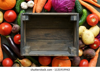 Set of autumn vegetables. Fresh Vegetables from Farm Market