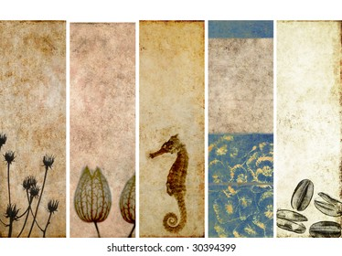 set of banners with earthy texture. very useful design elements.
