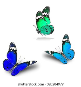 The set of beautiful flying green and blue butterflies with soft shadow on the white background