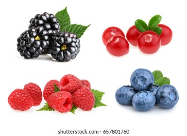 Set of beautiful fruits ( blackberries, cranberries, raspberries, blueberries)
