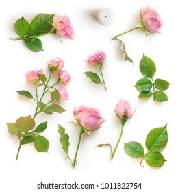 Set of beautiful pink roses and leaves isolated with shadow on a white background