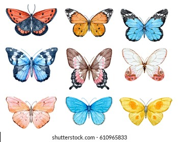 Set of beautiful watercolor butterflies.  blue, yellow, pink and red butterfly illustration
