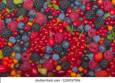 set of berries background