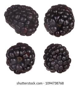 set of blackberries isolated on white background