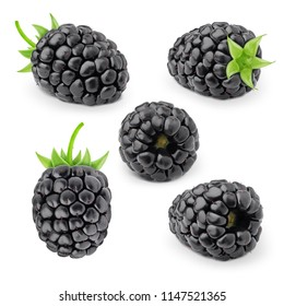 Set of blackberries isolated on a white.