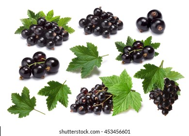 Set of blackcurrant berries (Ribes Nigrum) and leaves. Infinite depth of field, clipping paths, shadows separated
