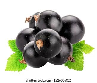 Set of  blackcurrants isolated on white background.
