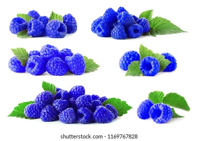 Set with blue raspberries (Rubus leucodermis) on white background