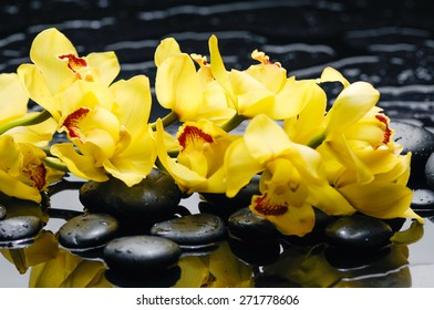 Set of branch yellow orchid with therapy stones