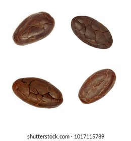 set of cacao beans isoloted