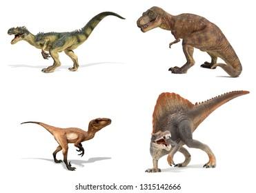 Set of carnivorous dinosaurs isolated on white background. Tyrannosaurus rex, allosaurus, velociraptor and spinosaur