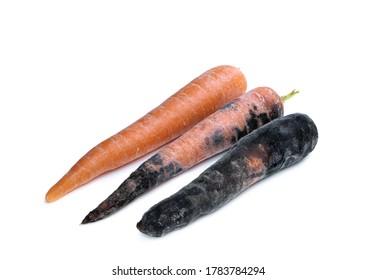Zanahoria Podrida High Res Stock Images Shutterstock Los pasos son sencillos, debemos coger. https www shutterstock com image photo set carrots different stages decay 1783784294