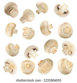 set of champignons isolated on white background