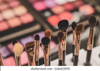 Set of a cosmetic brushes./ Makeup brushes in studio beauty salon