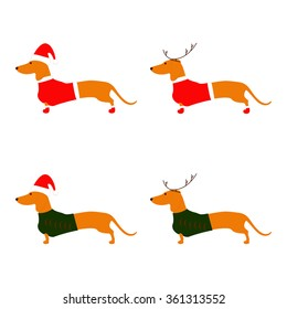 Set of cute dachshund brown with Christmas suit isolated on white background