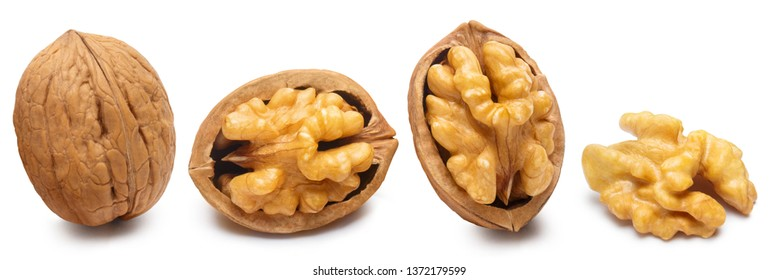 Set of delicious walnuts, isolated on white background