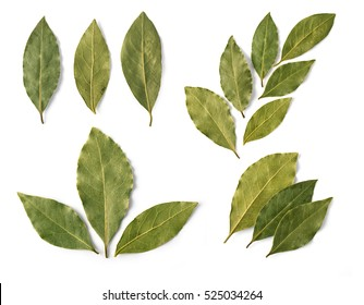 set of Dried bay leaves isolated on white