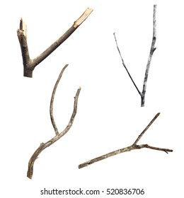 Set of dry tree branch, isolated on white background - Shutterstock ID 520836706