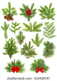 Set of evergreen coniferous tree branches isolated on white background. Christmas decoration red ribbon bow, red berries