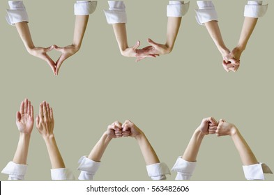 Set of female hands, different gestures. Isolated on background.