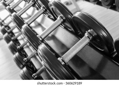 Set of Fixed-weight dumbbells in the gym.  Weight training equipment
