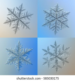 Set of four snowflakes on bright blue gradient background. This is real snow crystals: large stellar dendrites with complex structure and long, massive arms with lots of side branches.