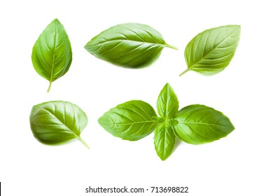 Set of Fresh Basil leaves isolated on white background. Macro. Top view. Flat lay