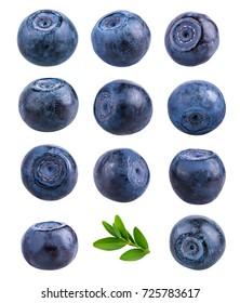 Set fresh blueberry isolated on white background