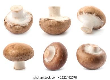 Set of fresh delicious champignon mashrooms on white background