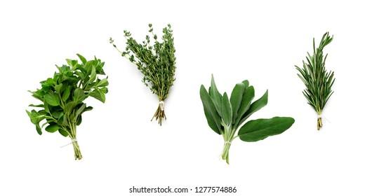 set of fresh garden herbs isolate on white background