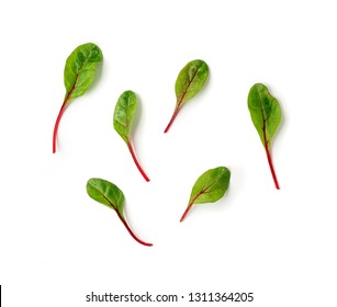Set of fresh green chard leaves or mangold salad leaves on white background. Flat lay or top view fresh baby beet leaves, isolated on white background with clipping path.