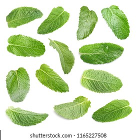 Set with fresh green mint leaves on white background