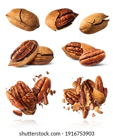 A set with Fresh tasty pecan nuts isolated on white background. High resolution image.