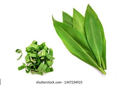 Set of fresh whole leaves of wild garlic and sliced. Allium ursinum, known as wild garlic, ramson. Isolated on white background.
