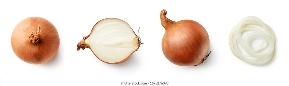 Set von frischen ganzen und geschnittenen Zwiebeln einzeln auf weißem Hintergrund. Draufsicht