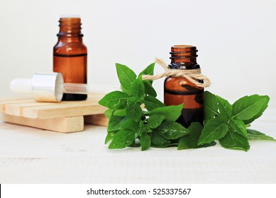 Set of glass bottles herbal tincture, essential oil, fresh green basil leaves. Medicinal plant health and beauty treatment benefits. Whole Food Skincare.
