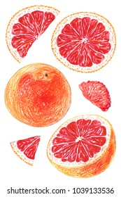 A set of grapefruit painted with colored pencils on a white background. Whole fruits and slices in a cut.