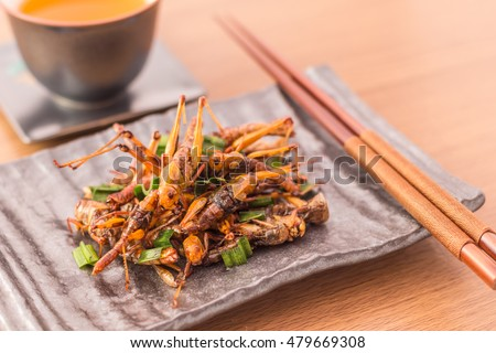 Set of Grasshopper edible insect crispy mixed with pandan, Thai pepper powder,  in a white plate with chopsticks, tea on wooden table background, Selective focus, Horizontal image