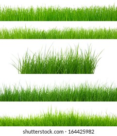 set of green grass isolated on white