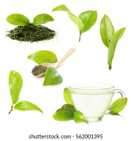 set of green tea. leaves and drink on a white background