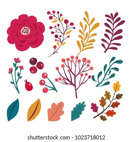 Set of hand drawing beautiful bouquets. Floral elements for your design: flowers, berries, branches, leaves. Botanical garden set.